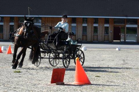 KJØRTE BRA: Ingeborg Tvete fra Venabygdsfjellet gjorde sakene sine veldig bra under dølahestmesterskapet på Stavsplassen på Tretten. Her sammen med Voldsblesen under presisjonskjøringen lørdag, med hestepasser Andrine Killi fra Kvam bak.