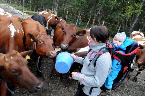 NYTT LIV: Jorid Belle-Thysell og hannes familie sørger for nytt liv i setergrenda Nedre Reindøl. Foto: Vidar Heitkøtter