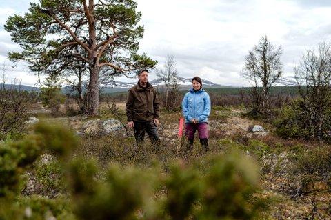 DNT Gudbrandsdal har møtt mange utfordringer i arbeidet med å bygge en ny turisthytte i SKåbu. Bildet er fra en befaring for å finne ny tomt til Dronningsetra.