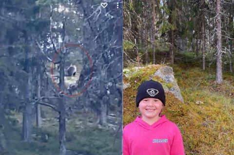 Kristoffer Kolloen var raskt ute av bilen og filmet da han og datteren Maria (6) oppdaget en bjørn på veg til hytta ved Furusjøen på Kvamsfjellet. Det ble en opplevelse for livet.