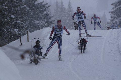 GULL IGJEN: Yngve Hoel vant sin ellevte VM-tittel i hundekjøring da han og Morjo vant combined i Tyskland lørdag. Her fører lunbyingen an foran Mikael Lillestu og Eskil Knag. Foto: Lotte Friid Fladeby