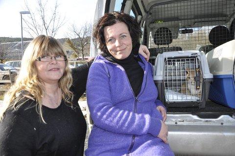 HJELPER: Rita Halvorsen (til venstre) og Anette Mortensen Johansen hjelper til med å få omplassert alle kattene.