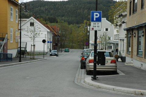 OKKUPERES: Næringsdrivende har sett det som et problem at parkeringsplasser okkuperes av biler, som står der hele dager.