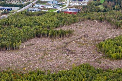 HER SKAL DET JOBBES: Mohagen sør, Gran kommunes framtidige næringsområde. Bildet er tatt 15. september 2018.