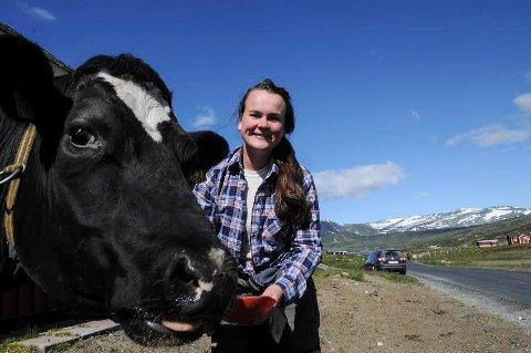 TUNGE DYR: Kuer er store og tunge dyr som kan gjøre stor skade uten at det er en vilje om å skade, sier Marit Knutsdatter Strand. FOTO: INGVAR SKATTEBU