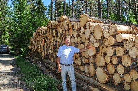 FOR LITE: - Hvorfor finner vi oss i at tømmeret tilsynelatende er mindre verd i Halden og Aremark enn andre steder? spør Geir Aarbu.