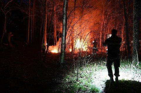 BRANNER: Det har vært flere branner på Hjortsberg skole og Strupe ungdomsskole den siste måneden. Politiet mener hendelsene henger sammen. Bildet er fra skogbrannen bak Strupe ungdomsskole i april.