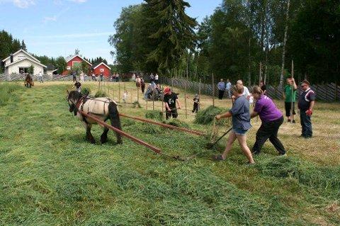 SLÅTTONN: Dølahesten Liagubben og Elisabeth Nøkleby var ivrige deltakere på slåttonndagen i Øvre Vang. (Foto: Rolv Krogfoss)