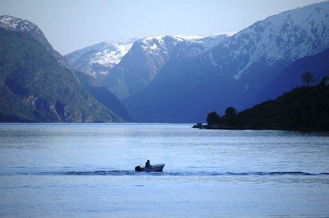 Lite fisk: Medlemmene i Ulvik viltnemnd har over fleire år observert ein nedgang i fisketettleiken i fjorden. Nemnda meiner det er på høg tid å kartleggje kva som årsak. Arkivfoto: Jon-Arvid Himle
