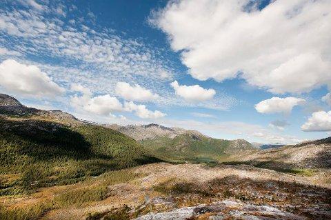 STATSKOG: Fra Lomsdal / Visten nasjonalpark