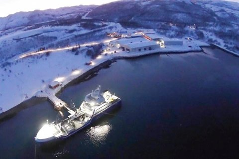 SMOLT: Hovedeiere av anlegget er Lerøy Seafood Group. Bildet er tatt under smoltlevering.