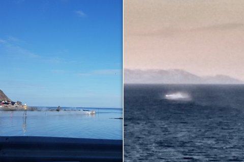 RØYK: Ekteparet fryktet at noen var i havsnød tidlig søndag.