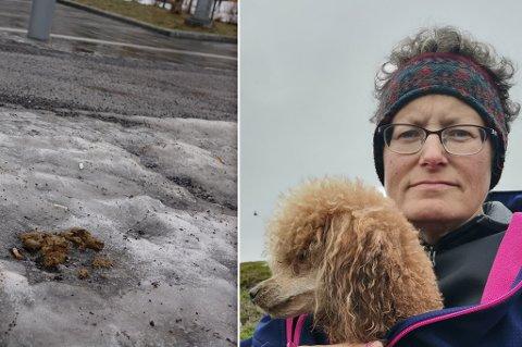 LEI: - – Jeg vil ikke ha den motstanden mot hunder slikt fører med seg, sier Bente Synnøve Olsen.