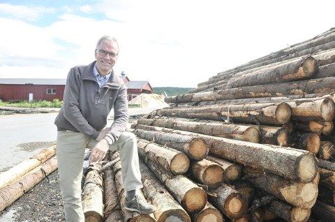 Gode penger i tre: Stangeskovene AS kan se tilbake på et særdeles godt driftsår i 2014, og den gode trenden fortsetter inn i 2015. – Alle deler av virksomheten går bra, sier disponent Erik Toverud.
