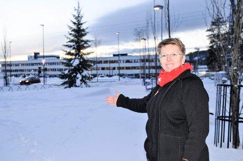 HER I TUSENÅRSPARKEN blir det julemarked lørdag, sier Anne Havnås i Bjørkelangen næringsforening. Foto: Øivind Eriksen