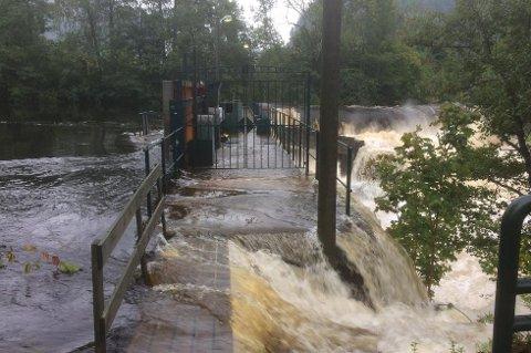 Vannet i elva står nå over demningen på Søndeled. Kommunen er bekymret for bebyggelsen på Søndeledtunet. Alle foto: Tore Myrberg