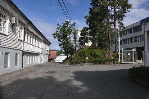 Penger i lyd og smerte: Kragerøs to mest lønnsomme bedrifter holder til i Gruveveien. Den norske høyttalerfabrikk til venstre og Vistin Pharma til høyre.
