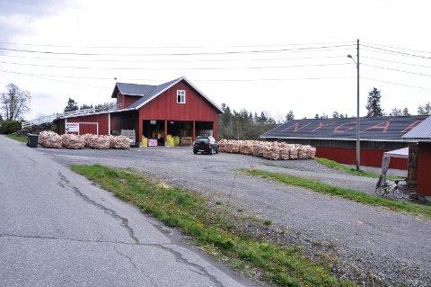 Det er i nærheten av gårdsbruket Nygård i Sannidal at det nye boligfeltet er planlagt.