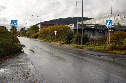 BØR FJERNAST: Vegvesenet si tilråding er å fjerna gangfelta i Opsangervegen i sentrumsområdet. (Arkivfoto).