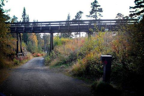 FORFALL: Akvaduktene i gruveåsen, eller rennene, som de gjerne kalles, var ingeniørkunst på sitt ypperste i gruvedriftstiden. I mange år har de forfalt.