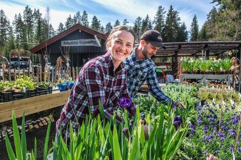 Stenger hagesenteret: Tove H. Hjermundrud og Håkon A. Hestenes overtok Kongsberg hagesenter i 2017, da dette bildet ble tatt. Nå har de bestemt seg for å tenke nytt, og heller jobbe med større prosjekter.
