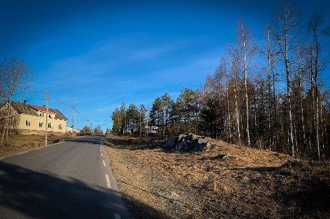 RØDSHØGDA: I dag et skogsområde like øst for byen. Om få år et boligfelt.