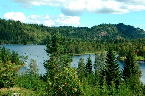 NATURSKJØNT: Det nye terrengløpet, Garsjø rundt, går i naturskjønne omgivelser.