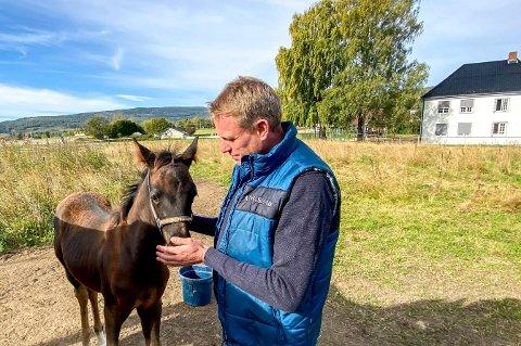 Usikker: Frank Robert Paulsen synes det er tungt å ikke bli ferdig med papirmølla av søknader og tillatelser for rideskolen på Valstad Gård.