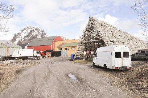 VOLD: Her i dette området på Svinøya ble en 20-åring av utenlandsk opprinnelse overfalt og banket kraftig opp torsdag kveld. Politiet ser meget alvorlig på hendelsen, og setter alt inn på å oppklare hva som skjedde. Fornærmede har opplyst at tre eller fire norske ungdommer overfalt ham. Foto: Bjørnar Larsen
