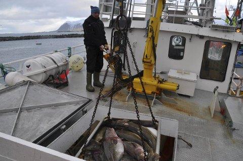 Primærnæring: Fiskeriene har vært og er Lofotens primærnæring nr. 1 i mer enn ett tusen år. Det er strid hvor de regionale fiskeriene skal administreres fra.
