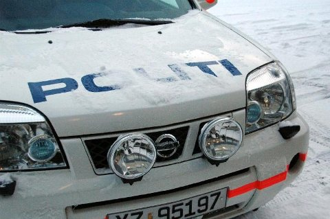 Den dømte kvinnen fra Salten rev av dørhåndtaket på en tjenestebil