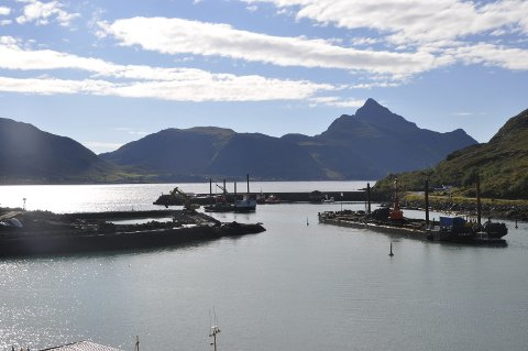 MULKT: Entreprenør Per Aarlseff AS må betale døgnmulkt etter at de fortsatt ikke er ferdig med Napp havn. Foto: Kai Nikolaisen