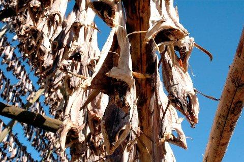 Tørrfisk fra Lofoten er også et beskyttet varemerke