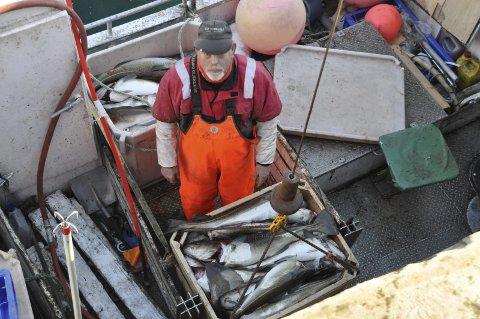 ERFAREN: 75 år gamle Ståle Pettersen på «Kjelløy» fra Ylvingen hadde også god fangst.