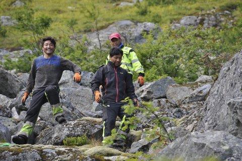 Stibyggere: Sherpaer fra Nepal har spesialkompetansen på bygging av naturstier som er viktig for å sikre stien til Reinebringen, mener Moskenes kommune. Et Narvik-firma har klaget kommunen inn for KOFA for brudd på reglene for offentlige anskaffelser.