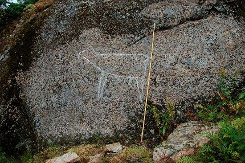 Lofoten og Vesterålens første funne helleristning i friluft - her er den!