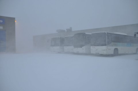 INNSTILT: Bussene blir stående i ro hele torsdag Foto: Kai Nikolaisen