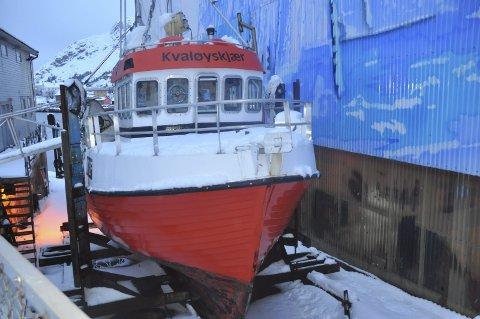 SATSER: Den 12 meter lange sjarken er bygget i 1999 og vil snart få navnet «Angelsen Junior». Foto: Kai Nikolaisen