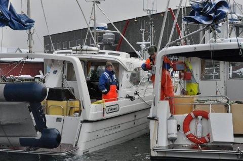 FRITIDSFISKE: Nå skal Havforskningsinstituttet kartlegge fritidsfisket i Norge. Ill.foto: Gullik Maas Pedersen