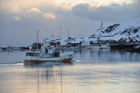 FISKERI: Vestvågøy gir 45.000 til et forprosjekt om fiskerifaglig samarbeid.