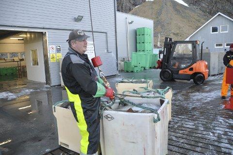FORNØYD: Paul Gunnar Rotøy er fornøyd med både fangst og priser. Begge foto: Kai Nikolaisen