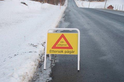 Viltnemda måtte avlive en elg etter en påkjørsel på E10 i Vågan. Illustrasjonsfoto
