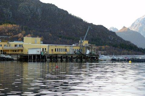 Fikk ja: Nordlaks fikk grønt lys i NPU til planer  på Pundslett.Foto: Arkiv