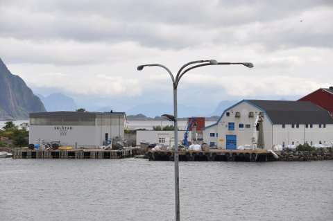 Selstad AS i Svolvær er med når kineserne inngår milliardavtaler med bedrifter i Nordland mandag