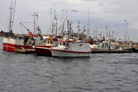 REDUSERT: Flåten på åpen gruppe må belage seg på å få fiske mindre torsk til neste år.