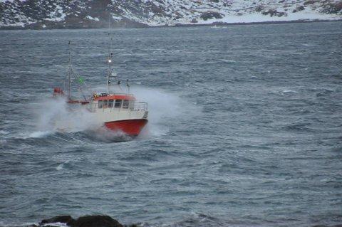 SJARK: Onsdag og torsdag vil Sjøfartsdirektoratet sjekkene sjarkene omkring i Lofoten