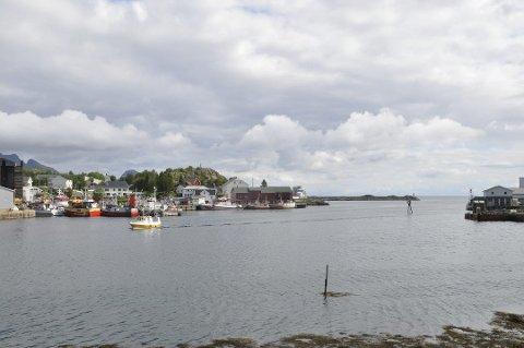BALLSTAD: Fiskeriutvalget i Vest-Lofoten næringsforening vil ha fokus på hvor mye areal som kan avsettes til kaformål  i Ballstad havn.