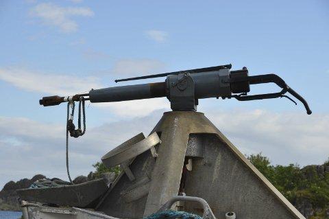 LITE AKTIVITET: Kvalkanonene har vært lite brukt i forrige uke.  Foto: Kai Nikolaisen