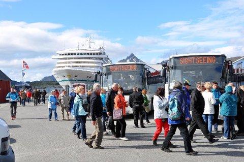 KRITISK: Formannskapet i Flakstad er kritisk til økt cruiseturisme i Lofoten.