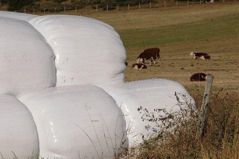 RUNDBALLEPLAST: Flakstad kommune ber bøndene ta grep for å minske spredning av rundballeplast.